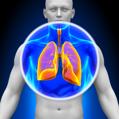 Mucus Strands May Trap Particles in the Lungs of Cystic Fibrosis Patients