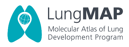 URMC Awarded $6 Million to Create Revolutionary LungMAP