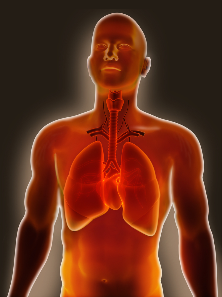 Newly Discovered Toxin May Cause Lung Inflammation, Contribute to Asthma & Other Lung Diseases