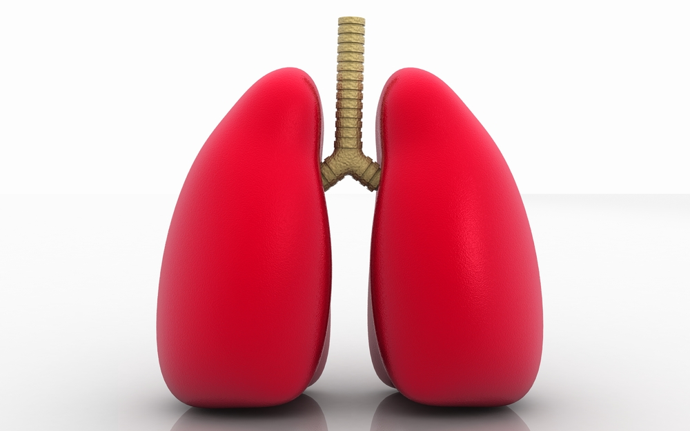 3D Human Lung Tissue Cultures Used to Test COPD Therapeutics
