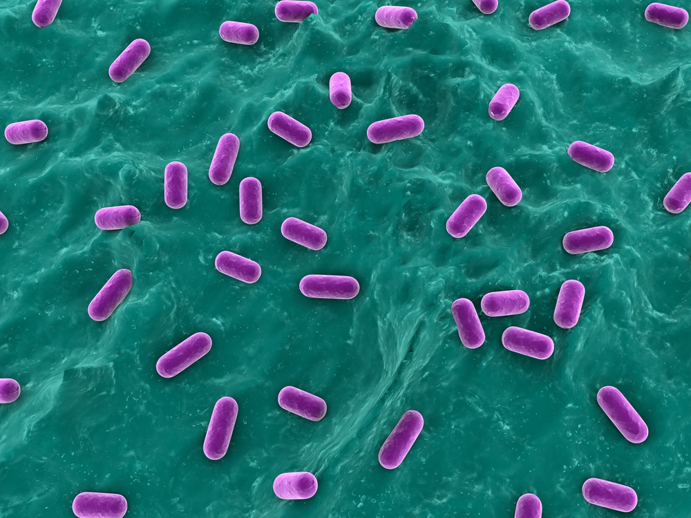 UC San Diego Researchers Develop Novel Detection Method for Antibiotics Resistance