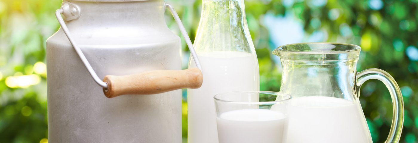 Unprocessed Cow's Milk Found to Prevent Asthma and Allergies in Children