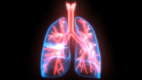 lung research grant