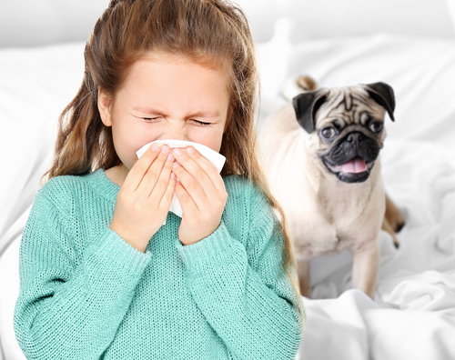 Dogs May Help Protect Children Against Asthma and Eczema, Studies Shows
